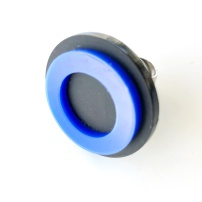 Ring, PGR025